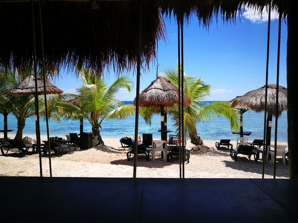 Beach Club Tropical Climate Vacations Relaxation Tranquility Outdoors Day Beach Palm Tree Beach Bar Mexico Mexicanstyle Travel Sea Water Beauty In Nature Luxury Tree Rear View Nature Sky People Adult Been There. Done That.