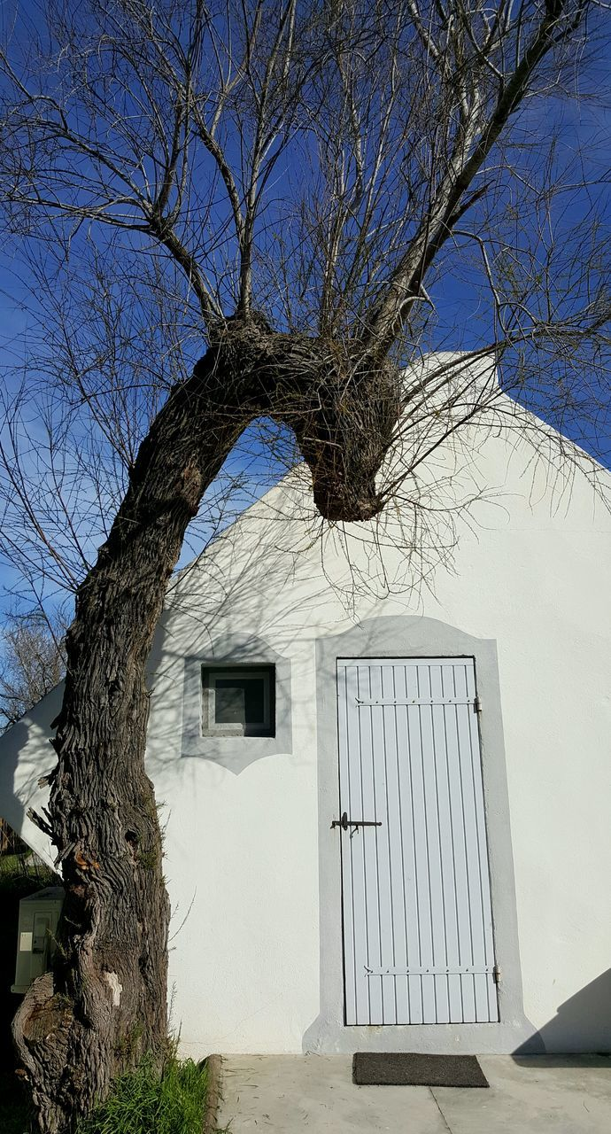 building exterior, architecture, built structure, tree, bare tree, branch, outdoors, door, house, day, no people, sky, exterior, clear sky