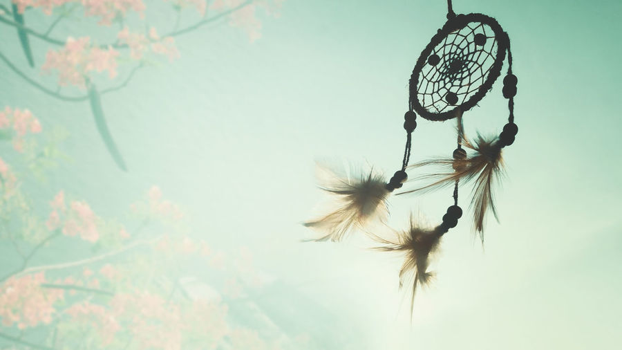 Dream catcher native american in the wind and blurred bright light background, hope and dream concept Good Luck Charm Good Luck Hopes And Dreams Abstract Sunset Tree Leaf Tranquility Flower Luck Fragility Growth Beauty In Nature Outdoors Day Focus On Foreground Close-up Hanging Feather  Sky Low Angle View Nature Plant No People Dreamcatcher Feather  Vulnerability  Craft Selective Focus Religious Equipment