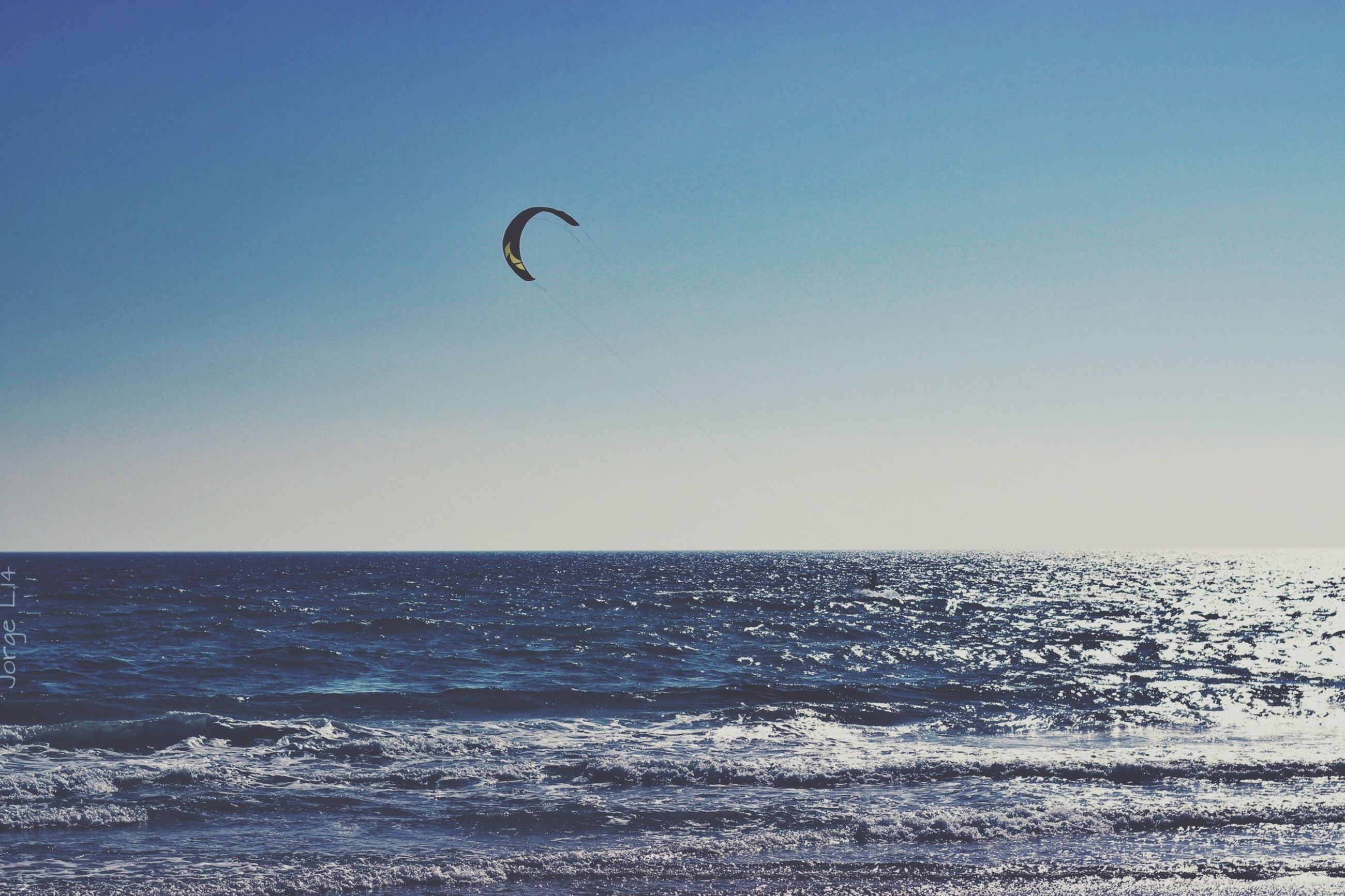 clear sky, flying, copy space, mid-air, low angle view, blue, bird, animal themes, one animal, animals in the wild, nature, beauty in nature, motion, wildlife, day, full length, scenics, extreme sports, tranquility, outdoors