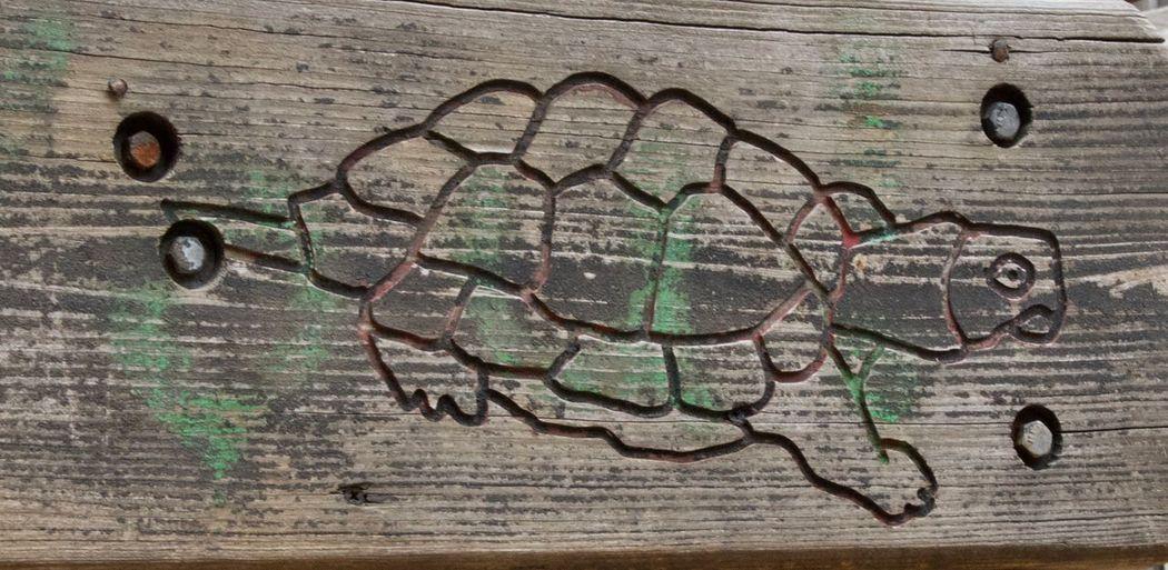 Directly above shot of graffiti on wall