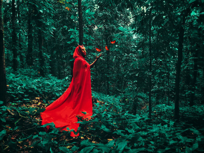 Forest Guardian. edited with PicsArt Picsart Mobilephotography Mystery Masked Mask Maskedportraits Masked Portrait Red Riding Hood Fairytale  Fairy Tale Conceptual Conceptual Photography  Creativity Creative Portrait Tree Evening Gown Forest Red Beauty Branch Dress Green Color The Portraitist - 2018 EyeEm Awards The Creative - 2018 EyeEm Awards
