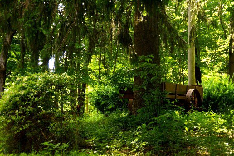 Forgotten Eye Em Nature Lover EyeEm New Jersey Abandoned Abandoned Places