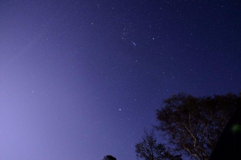 Sky Star -