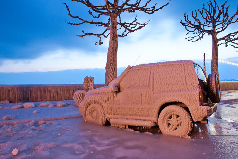 Snow covered vehicle by bare trees