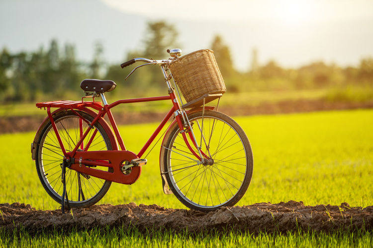 Bicycle leaning on field