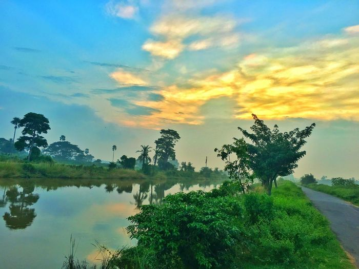 Somewhere in Rural India Tree Water Sunset Sky Tranquility Tranquil Scene Scenics Lake Beauty In Nature Nature Cloud - Sky Countryside Outdoors Remote Solitude Non-urban Scene Tranquility Nature Calm Blue Waterfront Reflection Tree