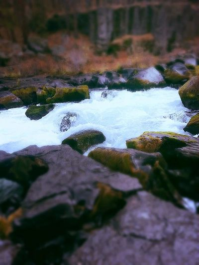 Deschutes river somewhere in oregon First Eyeem Photo