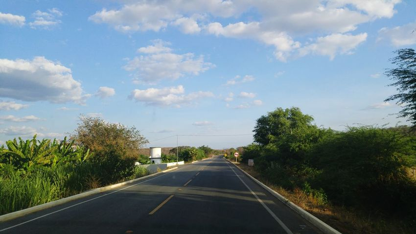 Transportation Road The Way Forward Tree Sky Diminishing Perspective Cloud - Sky Vanishing Point Cloud Mode Of Transport Road Marking Day Outdoors Journey Blue Cloudy Solitude Tranquil Scene Country Road Cumulus Cloud