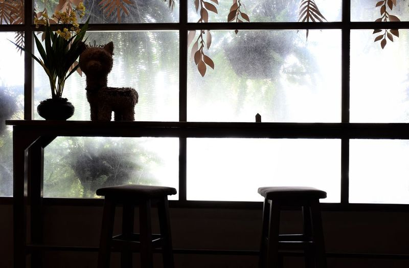 View of table and chairs against window