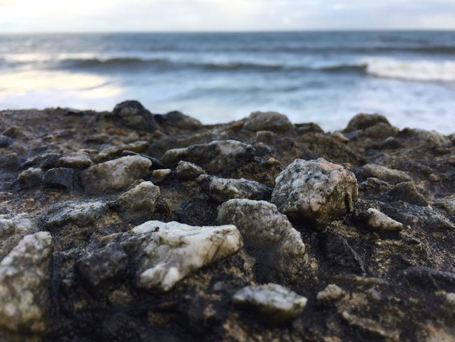 Beach Water Nature Shore No People Pebble Beach Day Sky Outdoors Sea Beauty In Nature Seashore Close-up Surface Level Pebble