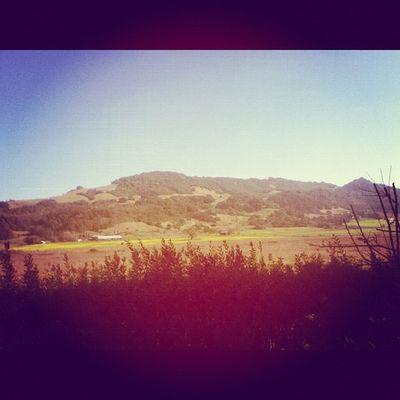 Santarosa California