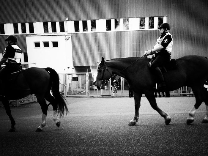 Police forces vs. horses Blackandwhite Streetphotography Streetphoto_bw Life In Motion
