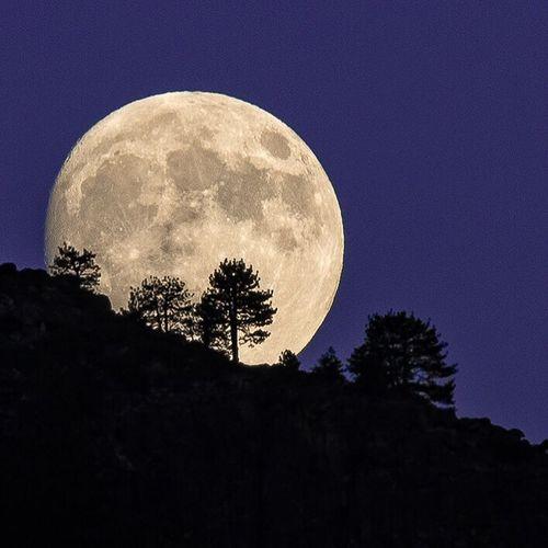Moonrise in Yosemite. Moon rising over Cathedral Rocks, Yosemite Valley. Moon Close-up Yosemite National Park