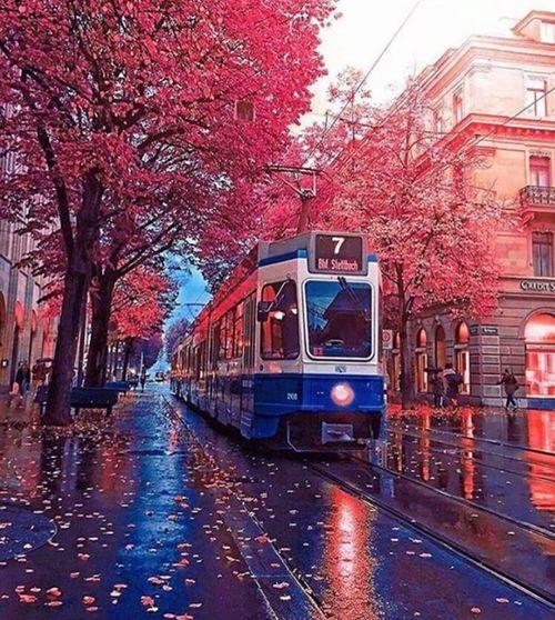 France France Photos France Streets Autumn Autumn🍁🍁🍁 Trainway Eye4photography  Eyemphotography Europe