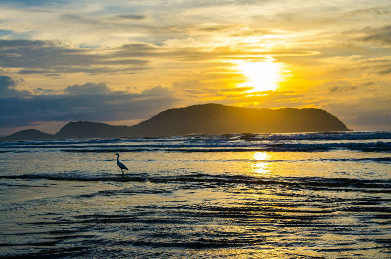 Sunset Silhouettes Morning Sun Praha Landscape_Collection Sunset Water One Person Silhouette Nature Scenics One Man Only Sea Outdoors Beauty In Nature Only Men Beach Sky Mountain Full Length Day