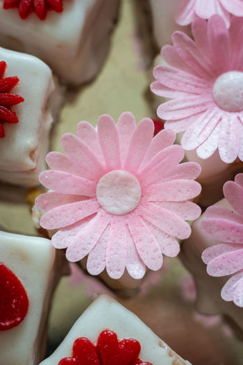 Colorful petit fours with flower decoration Flower Close-up Freshness Petal Pink Color Beauty In Nature Vulnerability  Fragility Flower Head No People Inflorescence Red Focus On Foreground Day White Color Petit Four Petit Fours Sweet Food Dessert Decoration