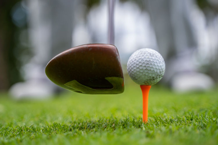 Close-up of ball on tee