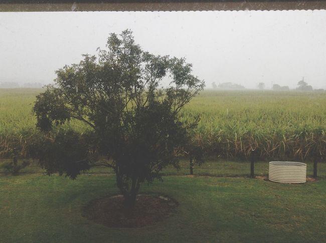 Rain Rain Day Storm