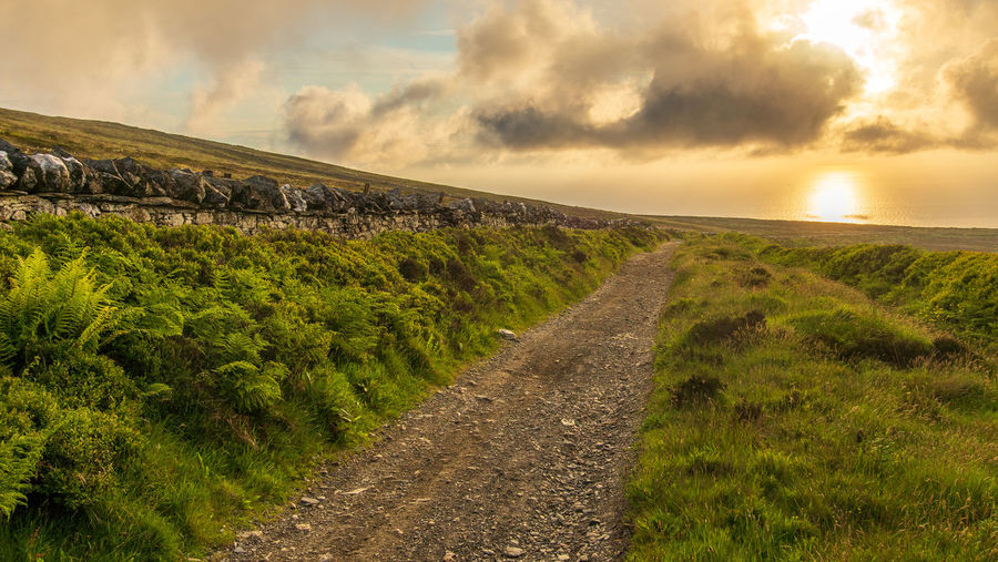 Golden Hour Isle Of Man Round Table Road Stone Wall Sea Clouds Plants Grass Fern Nature Tranquil Scene No People