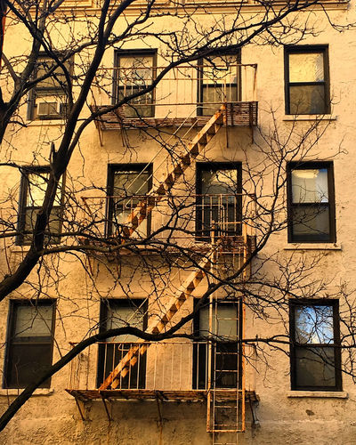 East Side Facade Architecture Bare Tree Building Exterior Built Structure Day Fire Escape No People Outdoors Residential Building Sky Tree