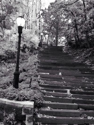 Stairways Eyem Stairways