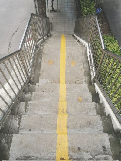 Yellow Steps High Angle View Steps And Staircases Staircase Hand Rail The Way Forward Road Marking vanishing point Diminishing Perspective Empty Road White Line Walkway Spiral Stairs Narrow Pathway Treelined Country Road Dividing Line