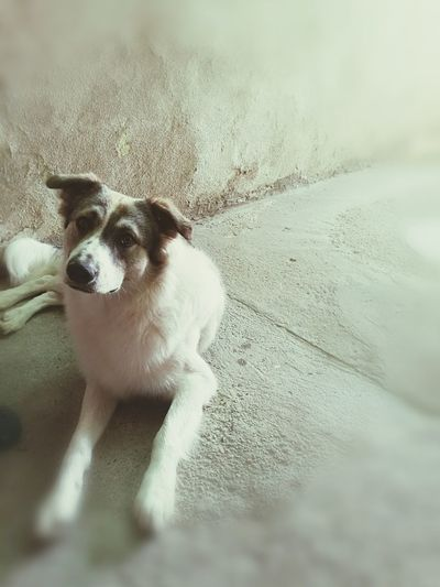 My best friend!!!