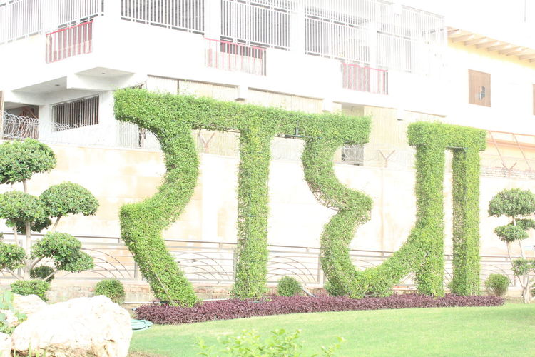Radhe Radhe Architecture Building Building Exterior Built Structure Day Formal Garden Front Or Back Yard Garden Grass Green Color Growth Hedge Ivy Nature No People Ornamental Garden Outdoors Plant Sunlight Topiary Tree