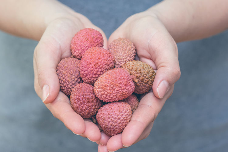 Woman hands holding fresh colorful lychee, litchi, liechee, liche, lizhi or li zhi fruits Asian Food, Close Up Close-up Detailed Exsortic Fruits Exsotic Focus On Foreground Food Food And Drink Freshness Fruit Hands Cupped Healthy Healthy Eating Healty Food Holding Human Body Part Human Hand Lichen Liechee Litchi Lizhi Lychee People