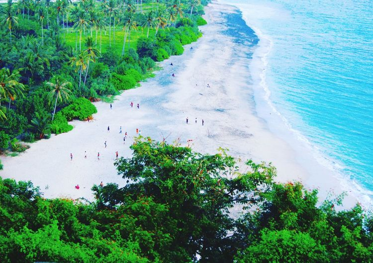 Beach Lombok Nature Beach High Angle View Beauty In Nature Sand Sea Scenics Tranquil Scene Water Day Outdoors Tree Tranquility No People Landscape Wave