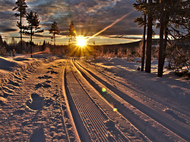 Ski Trails With Sun Beams Beauty In Nature Cold Temperature Day Landscape Nature No People Outdoors Rail Transportation Railroad Track Railway Track Scenics Sky Snow Sun Sunlight Sunset Tranquil Scene Tranquility Transportation Tree Winter