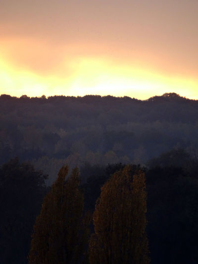 Autum Colors Double Hillock Orange Gradient Sky Vertical Photography High Section Forest Atmosphere Orange Color Landscape Outdoors Atmospheric