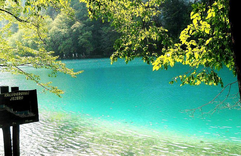 Plitvice National Park Croatia Lakes  Allblue Water Trees