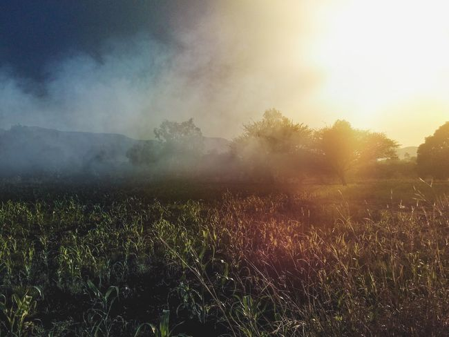Shades Sunlight Sunrise Morning Sunrise Landscape Serenity Natural Beauty Light And Shadow Light Effect Warmthandsunshine Yellow Color Mountains And Sky Countryside Allalone Beauty In Nature