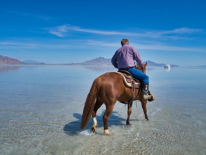 Man riding horse in the sea