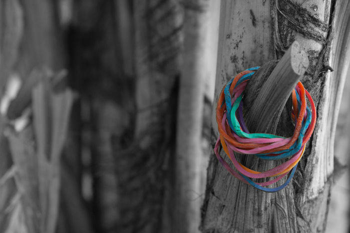 Art Photography Black And White Close-up Day Isolated Color Multi Colored No People Outdoors Plastic Band