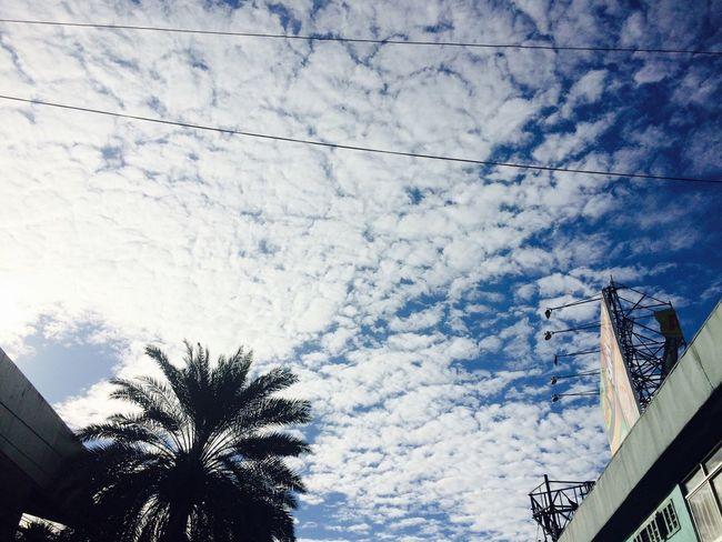 random stuff. Sky Sky And Clouds Beautiful Day