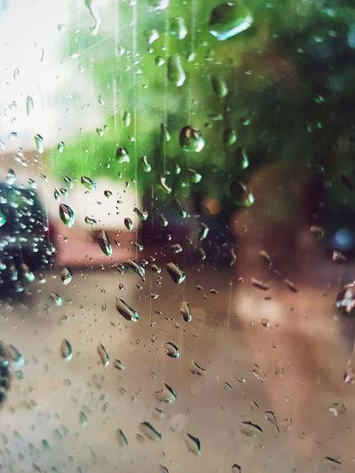 Window Drop Close-up No People Nature Rainy Season Water Day Fragility RainDrop Indoors  Sky