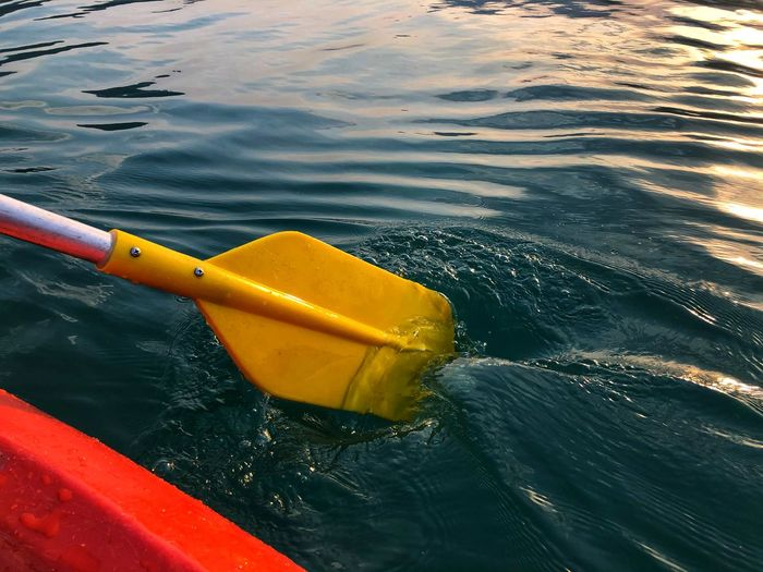 High angle view of yellow floating on water
