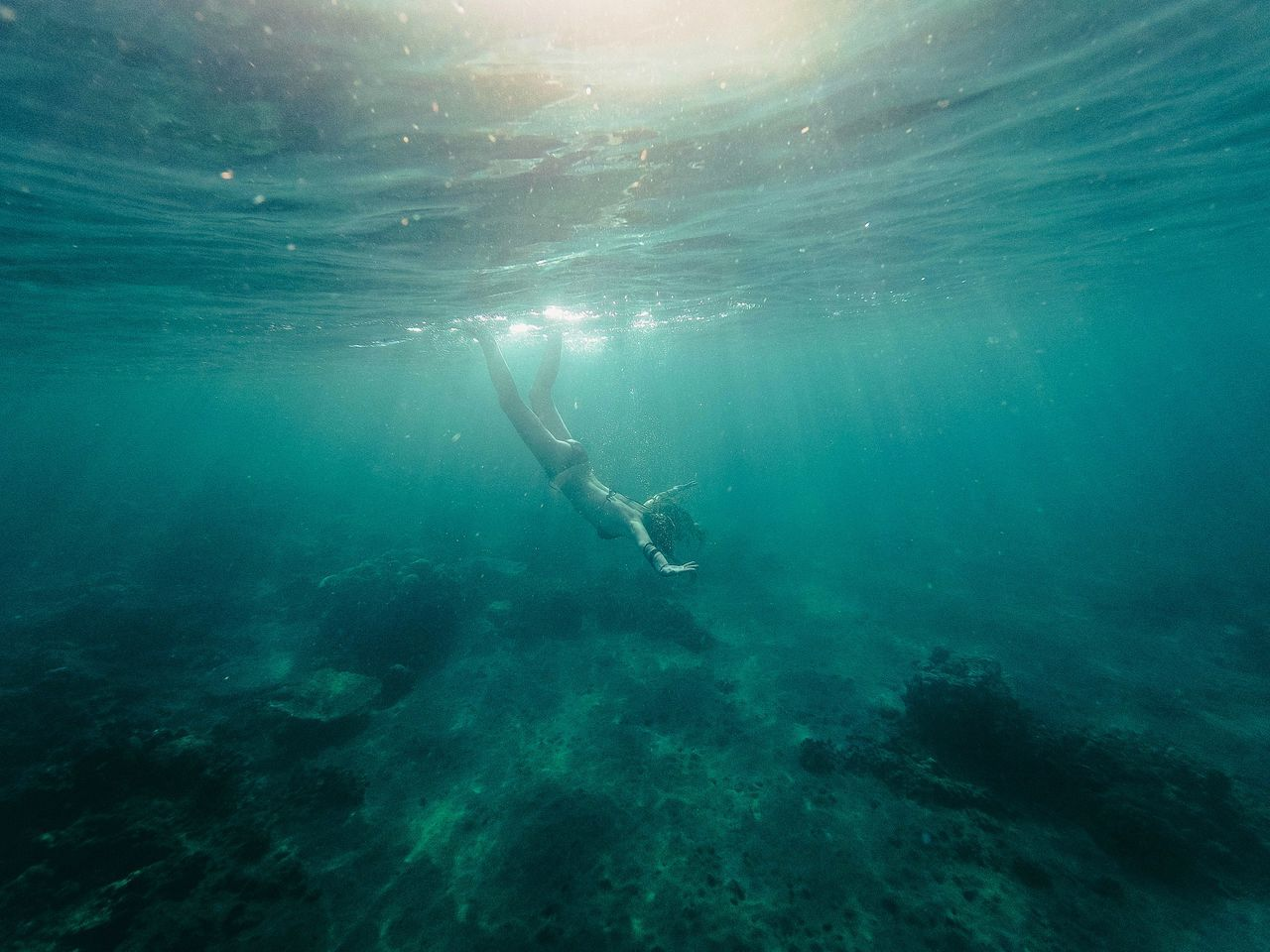 underwater, undersea, real people, sea, water, adventure, scuba diving, exploration, beauty in nature, nature, swimming, one person, day, scuba diver, outdoors, people