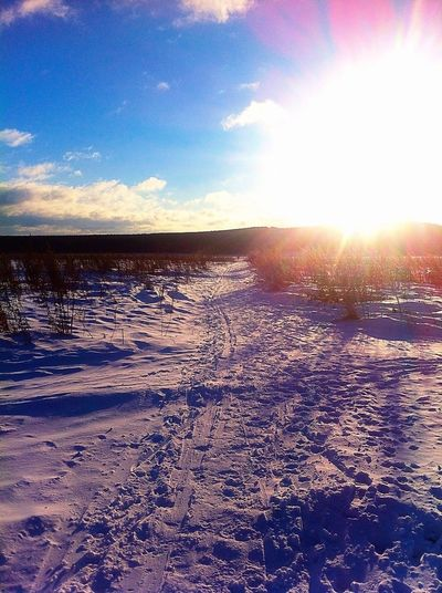 Hi sunny winter✌️❄️ Enjoying Life Hello World Time Showcase: December Taking Photos Hanging Out
