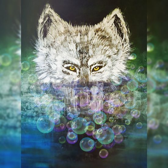 My Wolf... Domestic Cat Feline No People Animal Themes Water Yellow Eyes Indoors  Mammal Day Wolf Wolfs  Paint Painting Paintings Painting Art Painting #Creating Painted ArtWork Art, Drawing, Creativity Artistic Expression  Pictures