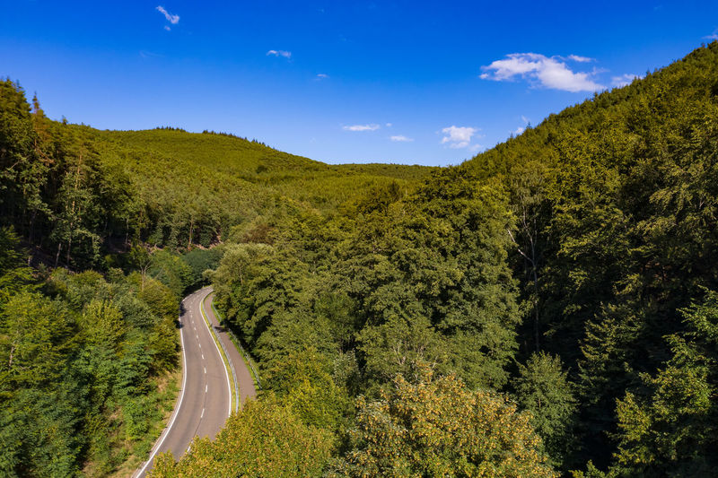 Aerial view of a mountain road with a bike path through a healthy european mixed forest