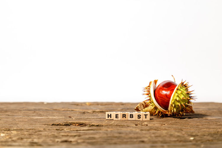 Close-up of fruits on table against white background