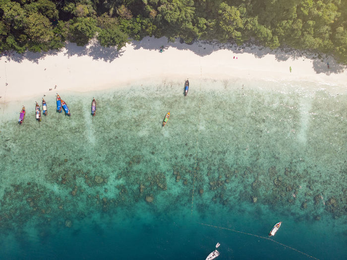 birds eye view of clear beach Water Group Of People Real People Sea Lifestyles Leisure Activity Nature Sport People Holiday Trip Day Men Vacations Crowd Tree Land Aquatic Sport Outdoors
