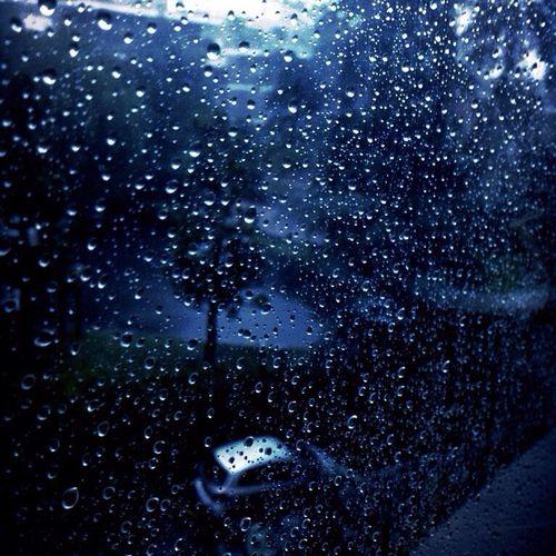 Rainy Days Raindrops Beauty Beautiful Rain Nature Water Fragility