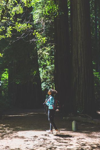 Man walking on tree in forest