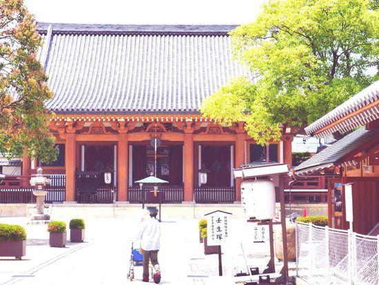 Kyoto Japan Mibu Mibudera Temple Architecture Day Blue Sky Outdoors Tree People Shinsengumi Healing Place  History Wabisabi Olympus PEN-F 京都 日本 壬生 壬生寺 新撰組