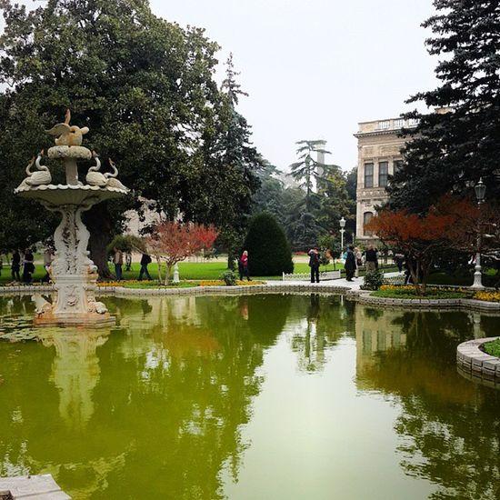 Садик перед красивым императопским дворцом со сложным названием Стамбул ландшафтныйдизайн Istanbul Garden trip voyage